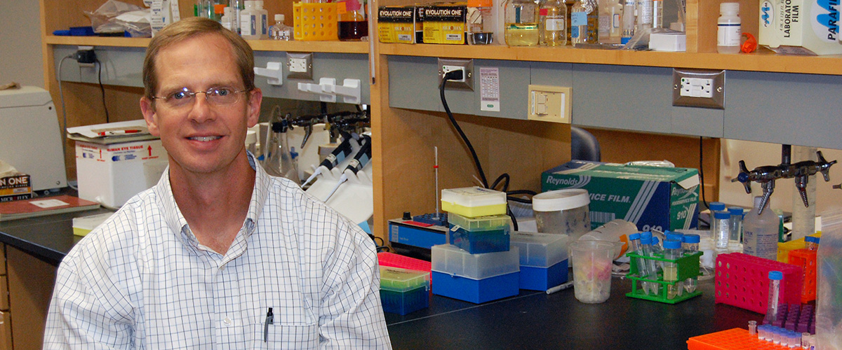 David Gamm, MD, PhD's lab studies inherited and acquired eye diseases that  culminate in the degeneration of photoreceptors and retinal pigment  epithelium ...