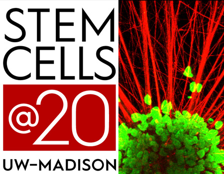 Stem Cells at 20